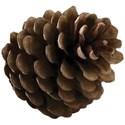 cwJOY-It sChristmas-acorn1