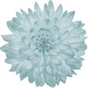 aw_winterblues_flower 3
