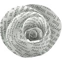 aw_winterblues_newspaper flower 1