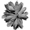 aw_flakey_fabric flower grfay