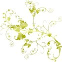 key lime swirl 6