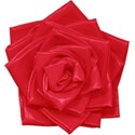 aw_bandit_duct tape flower red