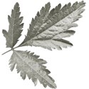 aw_bandit_leaves gray