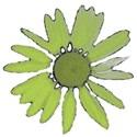 Green_Flower
