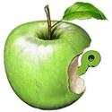 chey0kota_Apple Time_ele (5)