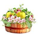 al_AT_ barrel of apples