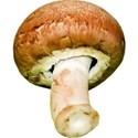 JAM-GrillinOut2-mushroom1