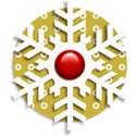 Snowflake Embellishment