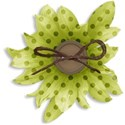 cala_green_flower copy