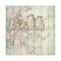 scrapbook-background-birds-paper