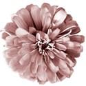 BOS flower02