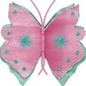 Butterfly_Sooze