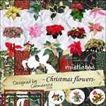Carmensita Kit - Christmas Flowers 20 different!