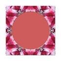 jThompson_pinkplums_frame3